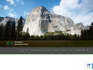 Yosemite's Enchanted Forest